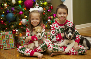 kids holding husky puppies