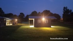 Large kennel playgrounds at night